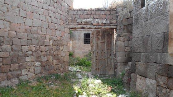 Ağırnas Mah. / 1223 Parsel / Arapocağı